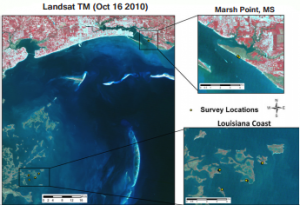 Satellite image of 2010 sampling locations along Louisiana and Mississippi coast