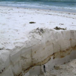 Oil layer uncovered on Pensacola Beach, FL
