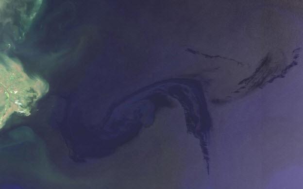 Envisat MERIS Full Resolution Level 1B image from 29-4-2010.