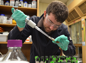 Andrew samples an oil-in-seawater emulsion, stabilized with polymer-coated iron oxide nanoparticles. (Photo provided by Worthen)