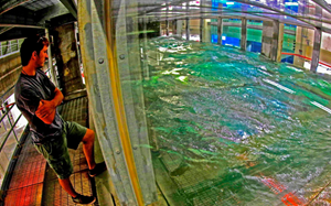 Nathan stands next to the new Surge-Structure-Atmosphere Interaction (SUSTAIN) wind-wave tank at the Rosenstiel School of Marine and Atmospheric Science (RSMAS). The enclosed acrylic tank (measuring 2m x 6m x 18m) has twelve independent wave paddles and a fan capable of delivering Category 5-equivalent wind speeds, making it the most complete wind-wave tank in the world. While the tank is still undergoing minor construction, Nathan says that it will play a key role in his future research. (Photo credit: Tamay Özgökmen)