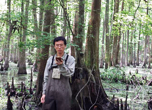 Xuan measures canopy cover in the Maurepus Swamp Wildlife Management Area using a spherical densitometer. (Photo provided by Xuan Chen)