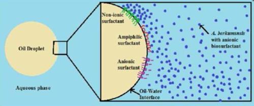 dispersant_2030b