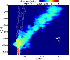 A Large Eddy Simulation of oil droplet (color contours) and gas bubble (white lines) plumes emerging from 1500 m below the surface into a stratified ocean, including 3D Coriolis force and west-to-east current effects. (Simulation performed by Dr. Di Yang, University of Houston)