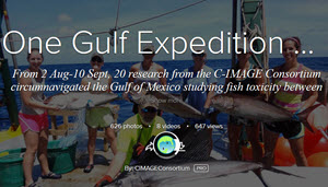 One Gulf Expedition - C-IMAGE