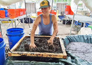 Postdoc Brittany Bernik strains marsh mud through a screen to prepare it for greenhouse experiments at Tulane University. (Photo by Sunshine Van Bael)