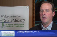 Researcher Jeffrey Wickliffe