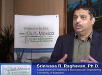 Researcher Srinivasa R. Raghavan