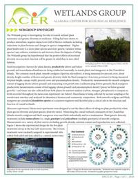 4703_ACER_factsheet_3_Wetlands