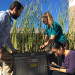 Evan Variano (left) along with doctoral students Madeline Foster (middle) and Kimberly Hyunh (right) is continuing this research with a focus on sediment processes in wetlands.